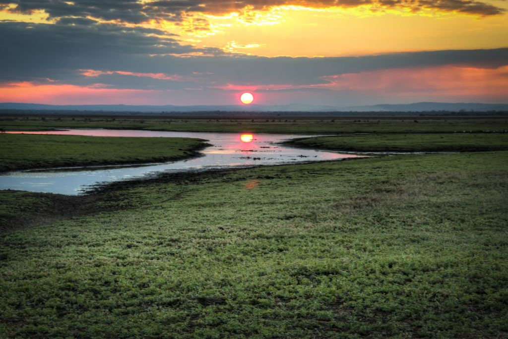 Gorongosa National Park Mozambique