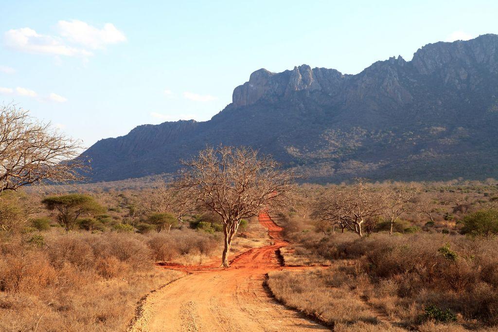 Ngulia Rhino Sanctuary