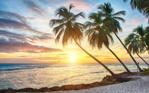 top beaches in barbados