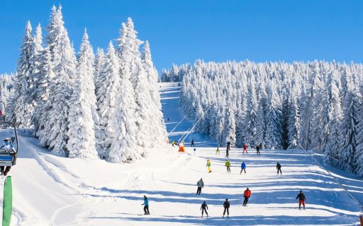 Ski resorts to enjoy in summer