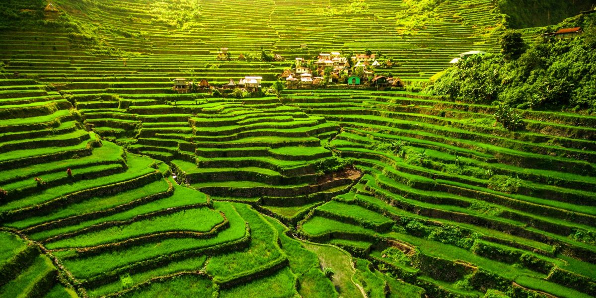 The Banaue Rice Terraces in the Philippines | Traveler by Unique