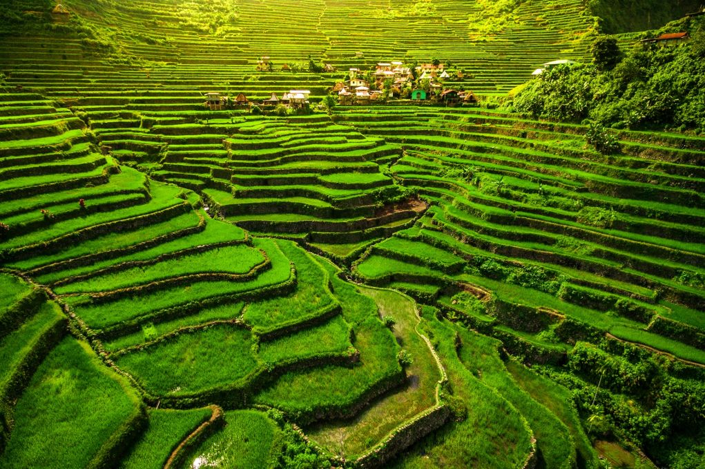 The Banaue Rice Terraces in Philippines