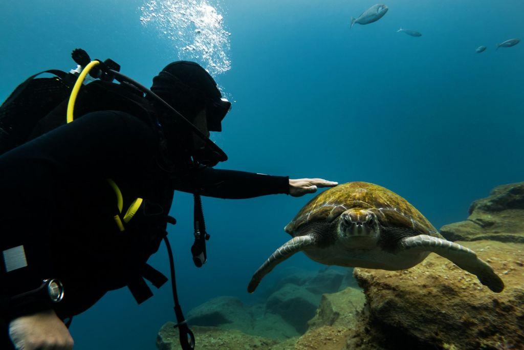 scuba diving - Zante