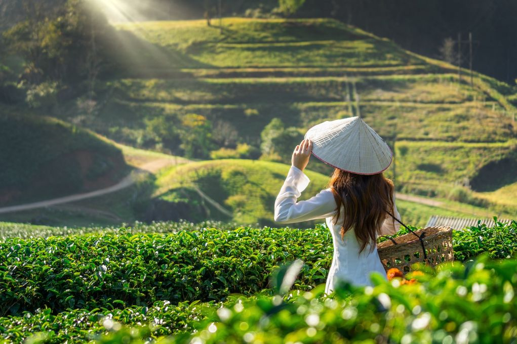 Top 5 Travel Tips For Vietnam