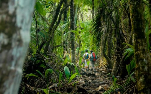 Must-trek Costa Rican hiking trails