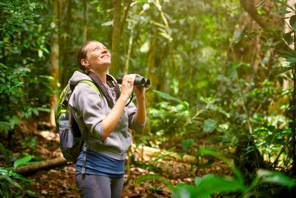 Things you need to know before traveling to a rainforest 4