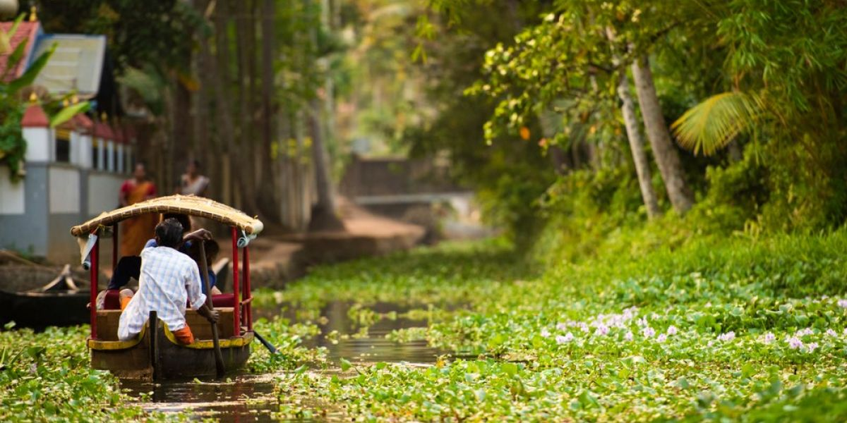 Things you need to know before traveling to a rainforest