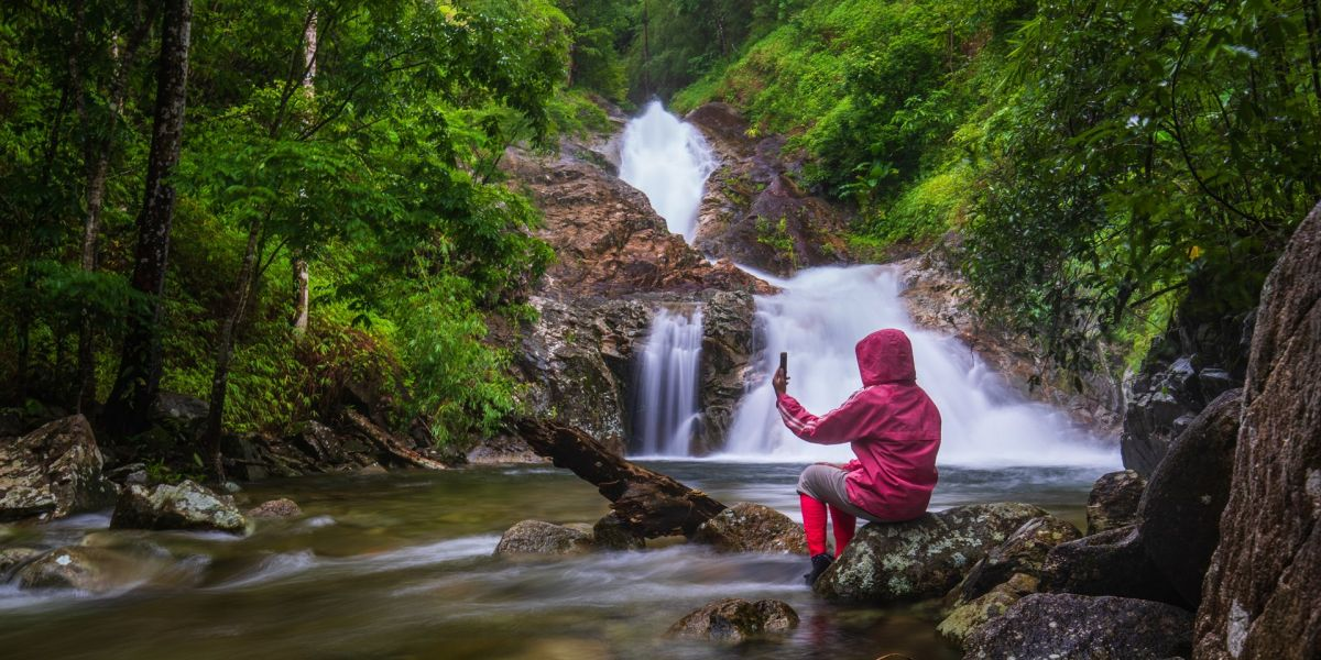 5 Tips For Great Rainforest Photography