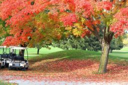 Best Destinations for Playing Golf in Fall