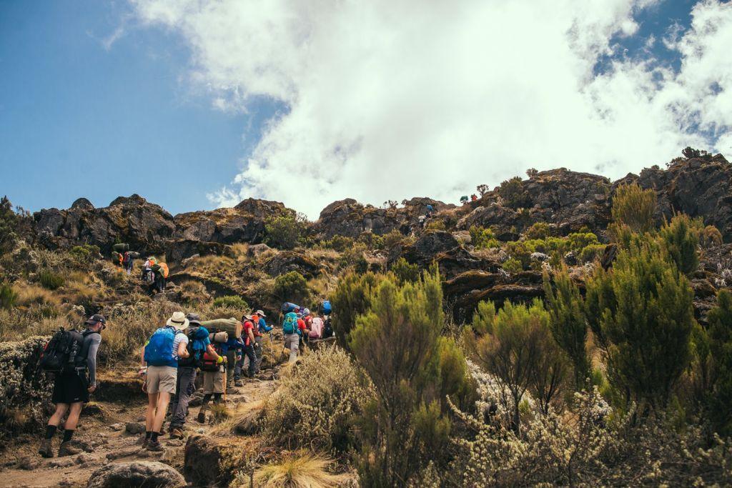 Kilimanjaro Hike 1