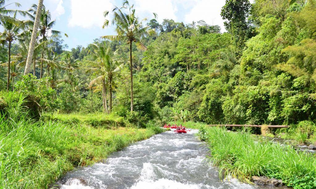 Best Daytrip Tours in Bali 4