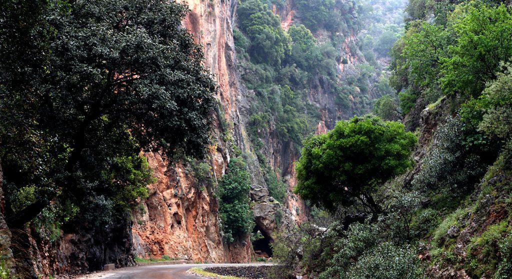 Therisso gorge Chania