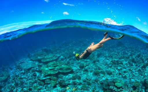 Best Snorkelling Spots In The Caribbean