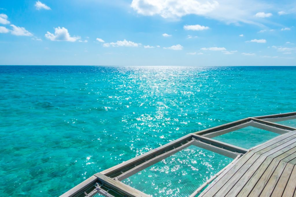 boat tours Bahamas