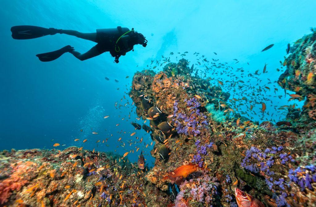 scuba Seychelles