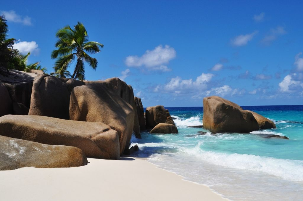 Cousin Island Seychelles