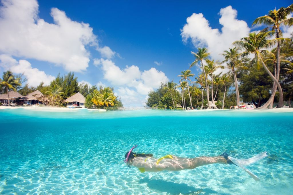 Diving Or Snorkelling Maldives